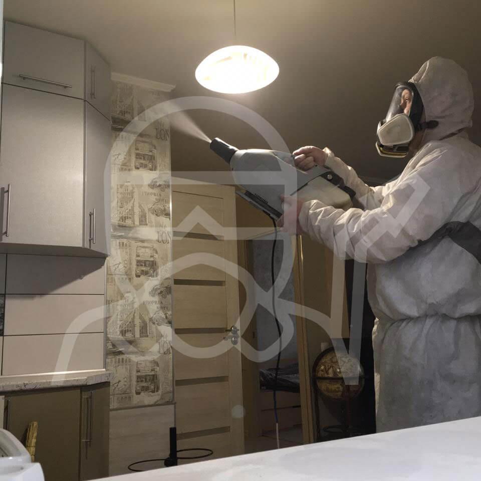 Дезинсекция кухонного гарнитура