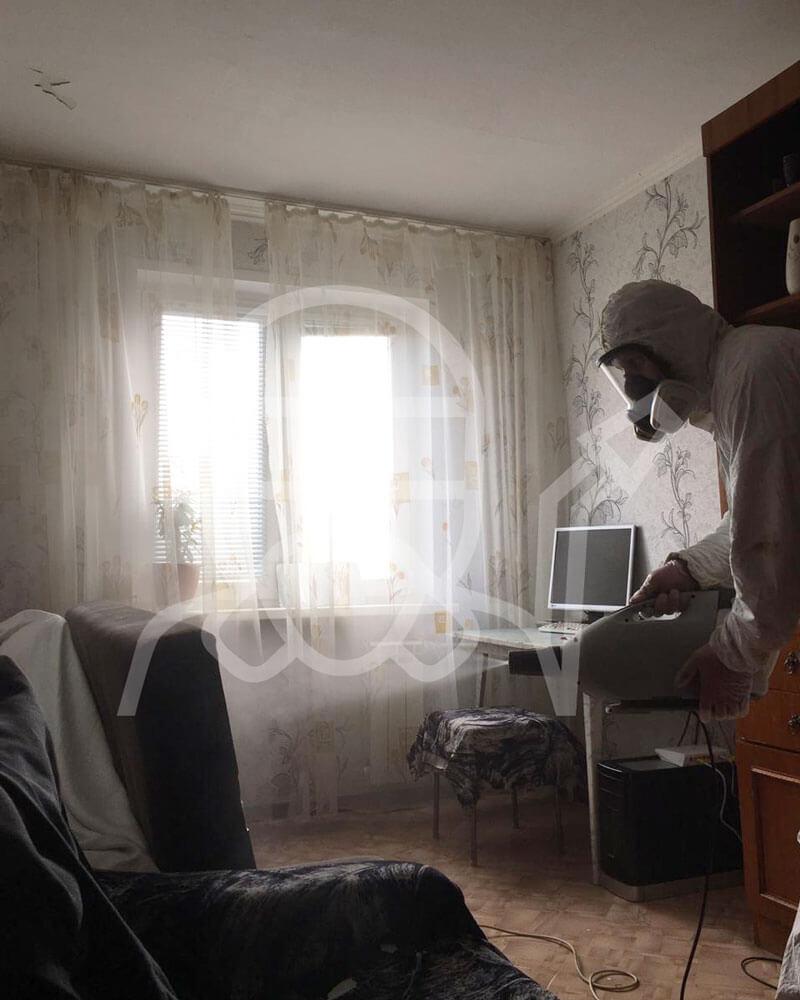 Выведение клопов в спальне