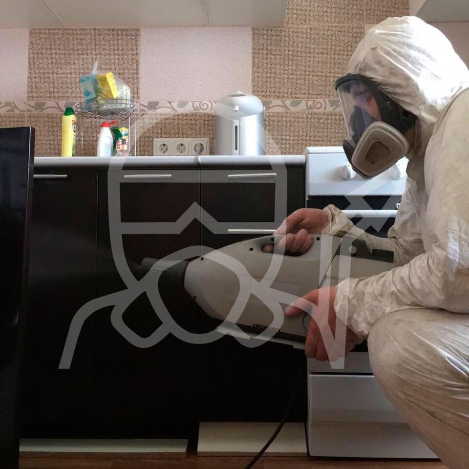 Генератор холодного тумана на кухне